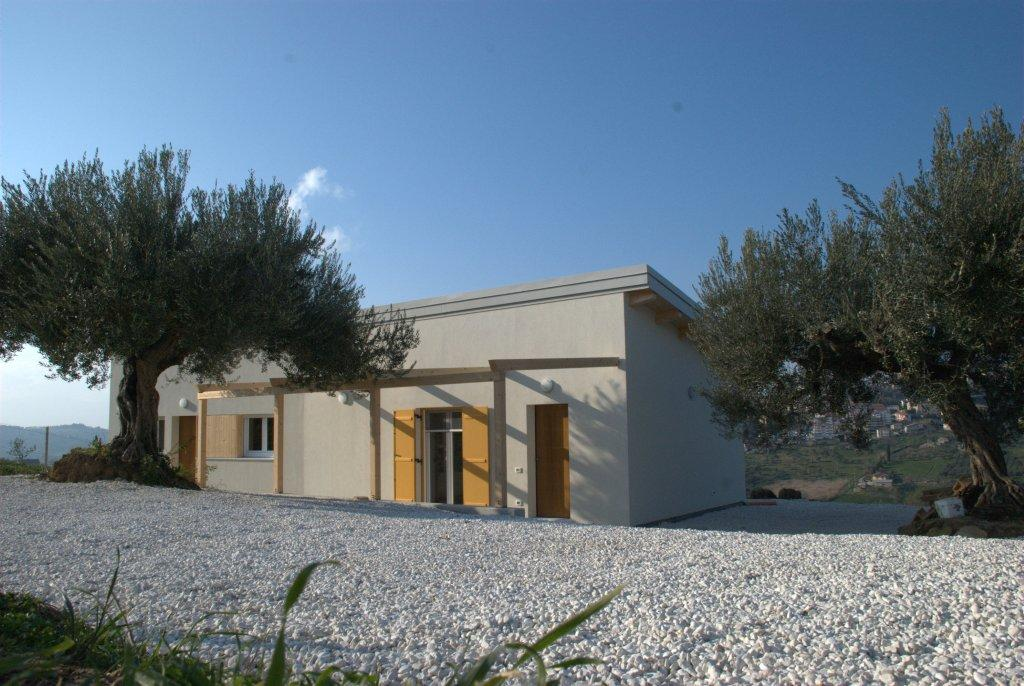 Single storey house amongst olive trees